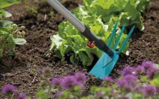 Электрическая тяпка для прополки огорода: возможности, преимущества, виды, обзор моделей