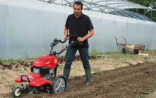 Какой культиватор лучше выбрать для сада и огорода на даче: типы и критерии выбора