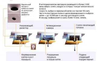 Устройство и принцип работы струйного принтера