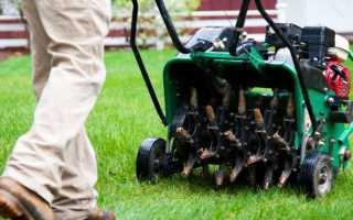 Как выбрать аэратор для газона: бензиновый или электрический, скарификатор или вертикуттер