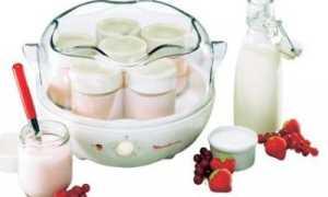 Йогуртница Мулинекс: применение и возможности