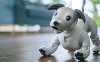 Sony представили новую модель роботизированной собаки