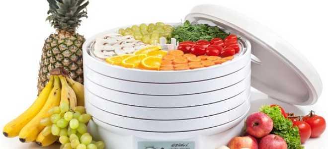Обзор популярных сушилок-дегидраторов для овощей и фруктов Ezidri и Вольтера