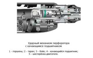 Чем отличается дрель от перфоратора: конструкция, мощность, назначение