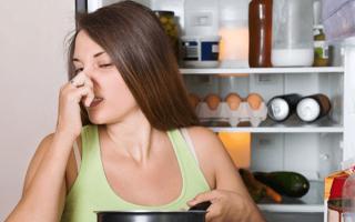 Как убрать неприятный запах из холодильника быстро, чем помыть чтобы устранить причину