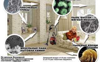 Какой очиститель воздуха для дома выбрать при аллергии на пыльцу, шерсть животных и для астматиков